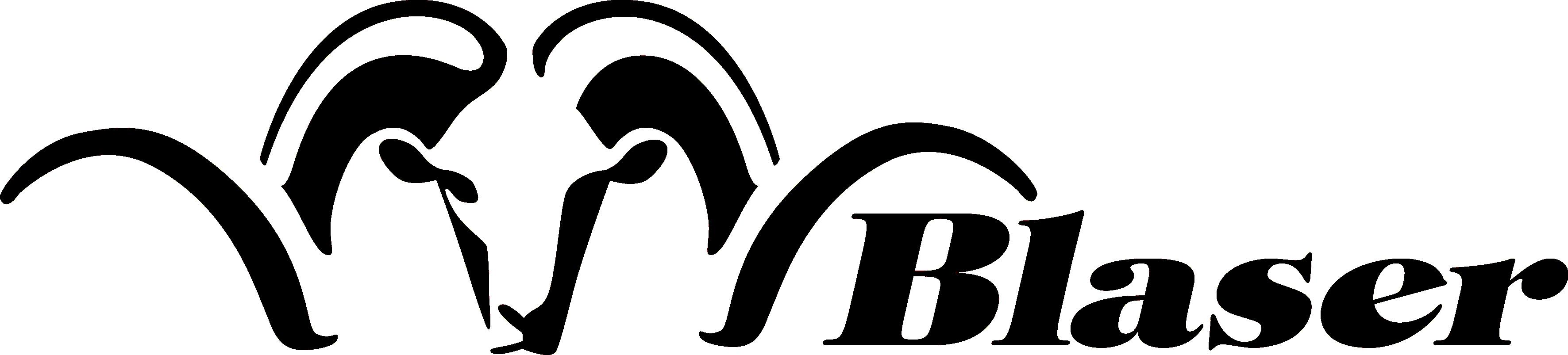 Blaser Group GmbH